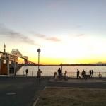 2013年釣り納め!若洲海浜公園で極寒の夜釣りを決行!果たして何が釣れるのか?!