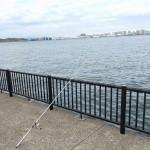 リベンジなるか?!若洲海浜公園でカレイ釣り!