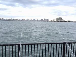 若洲海浜公園 釣り堤防