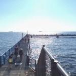 念願のアレがついに出ました!大人気の本牧海づり施設(本牧海釣り公園)に釣りに行ってみました。