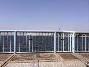桟橋内側の中央付近