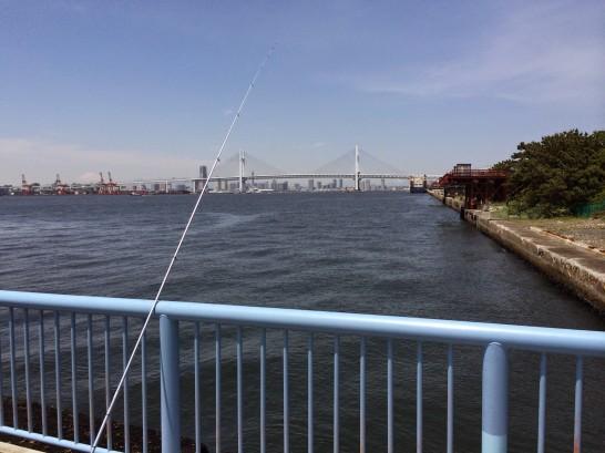 大黒海づり施設 桟橋通路