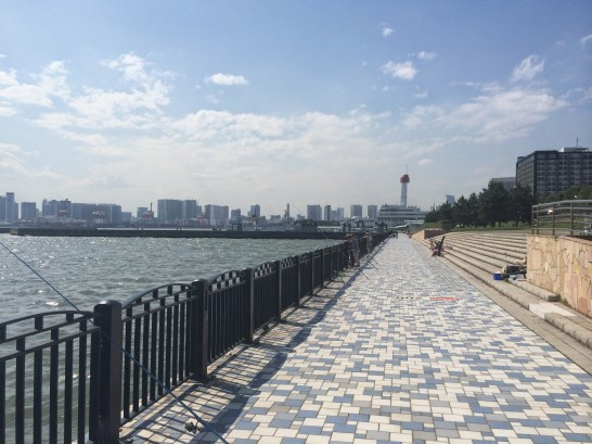 青海南ふ頭公園 中央付近