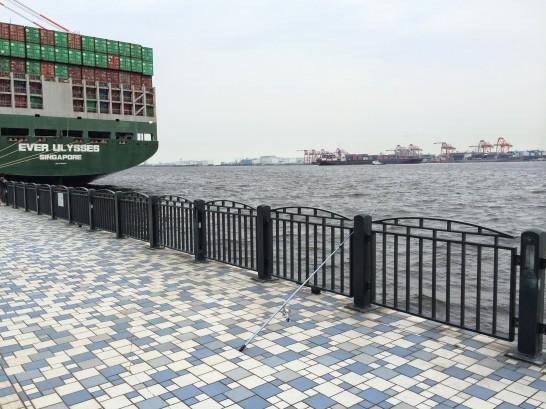青海南ふ頭公園 コンテナ側付近