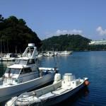 釣り人に人気の釣りスポットや一回の釣りにかかる費用はどのくらい?!読者が決める人気ランキング(釣り場•釣行費用編)