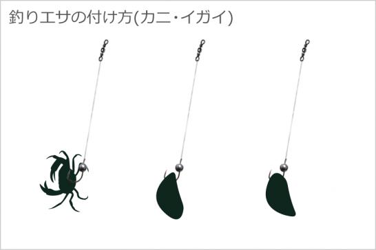 釣りエサの付け方(カニ・イガイ)