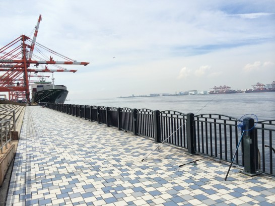 青海南ふ頭公園 左側付近