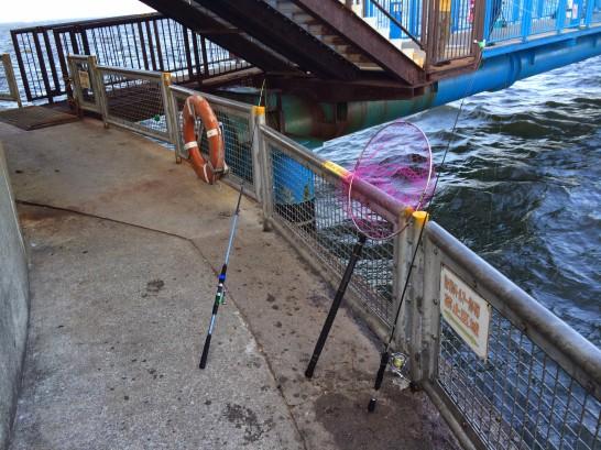 本牧海釣り施設 入口付近ゲート下