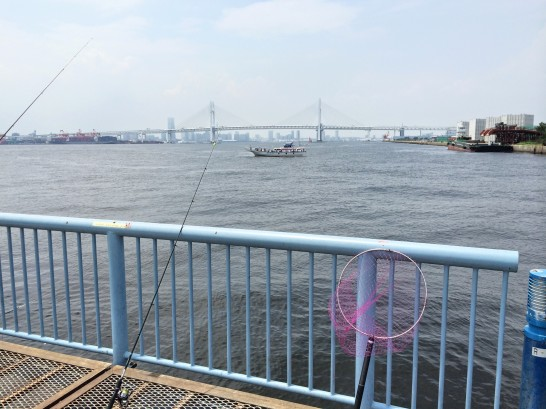 大黒海づり施設 桟橋右側手前付近