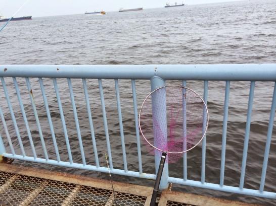 大黒海づり施設 桟橋外側中央