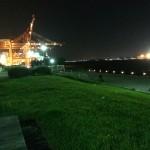 青海南ふ頭公園 夜釣り
