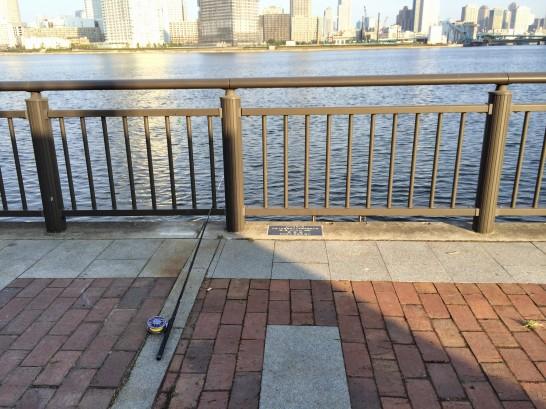 ガスの科学館前(春海橋公園) 朝釣り