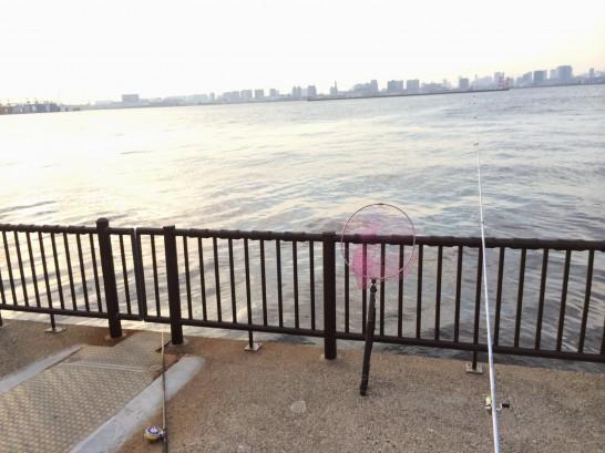 若洲海浜公園 釣行