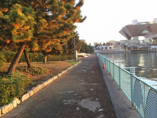 水の広場公園 中央付近