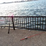 冬の若洲で大潮!果たして釣果は?!若洲海浜公園へ夜釣りに行ってみました。