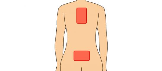 背中と腰の2枚貼り