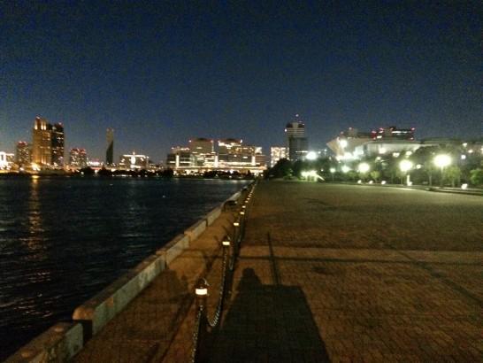 有明西ふ頭公園 夜釣り