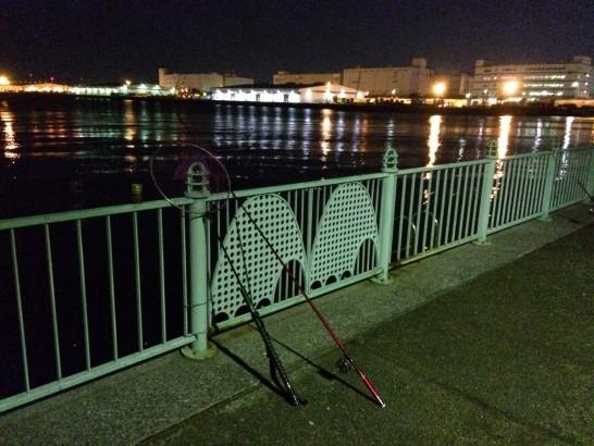 水の広場公園 夜釣り