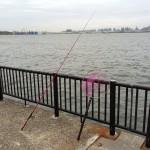 ついに湾奥にも春告魚が来た?!若洲海浜公園へ夜釣りに行ってみました。