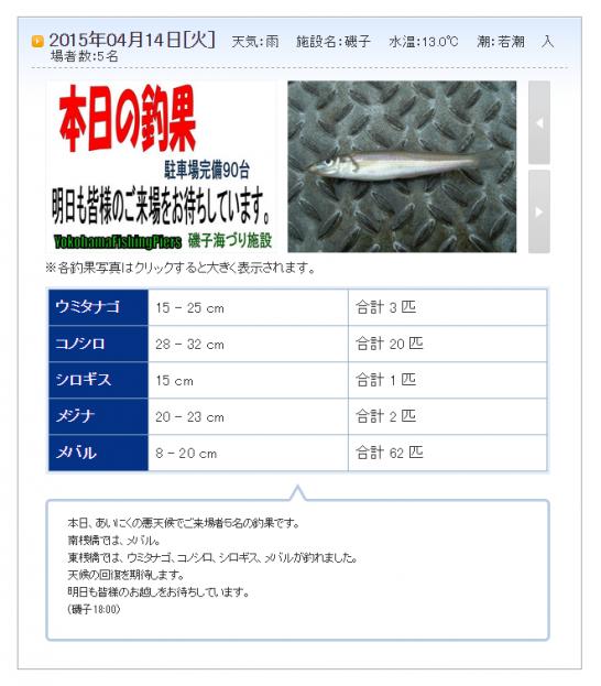 磯子海づり施設 メバル釣果情報