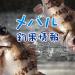 台風の影響でメバルに大打撃!からの尺メバル?!東京湾奥のメバル釣果情報(集計期間:2015年5月14日~5月20日)