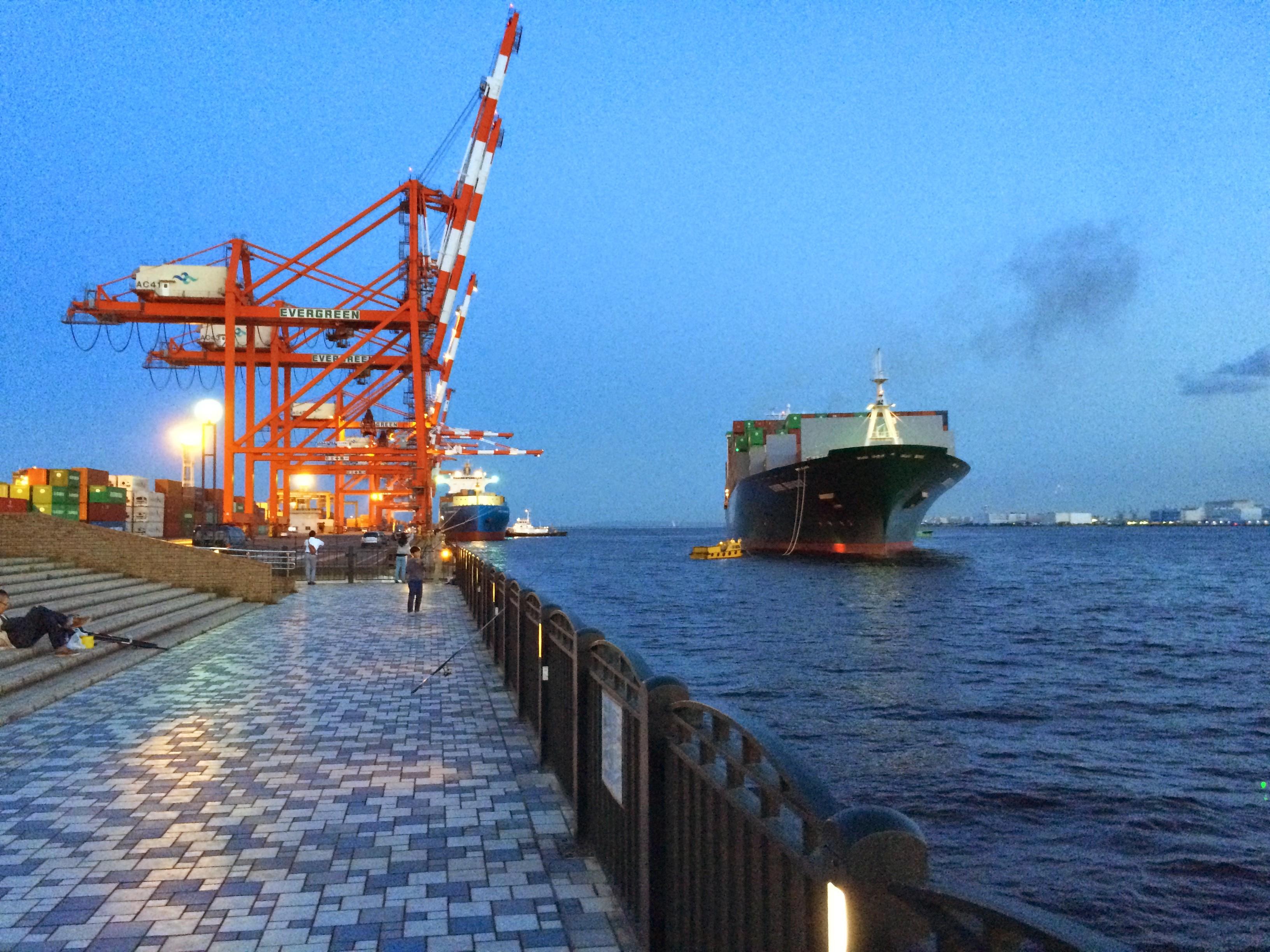 青海南ふ頭公園 貨物船入港
