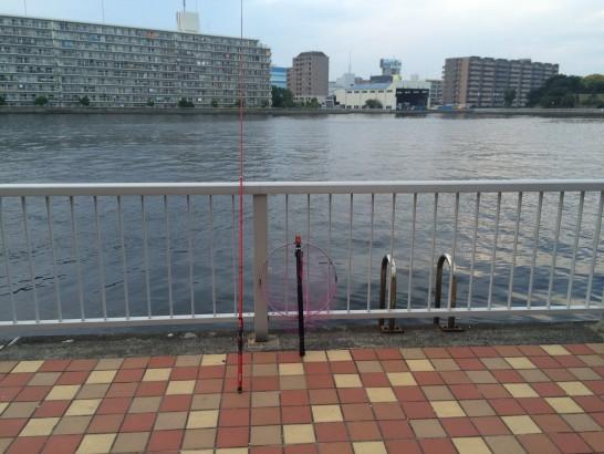 辰巳一丁目 釣り場