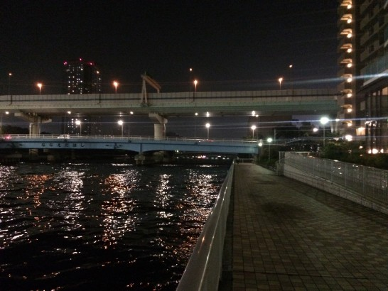 辰巳一丁目 釣り場 中央付近