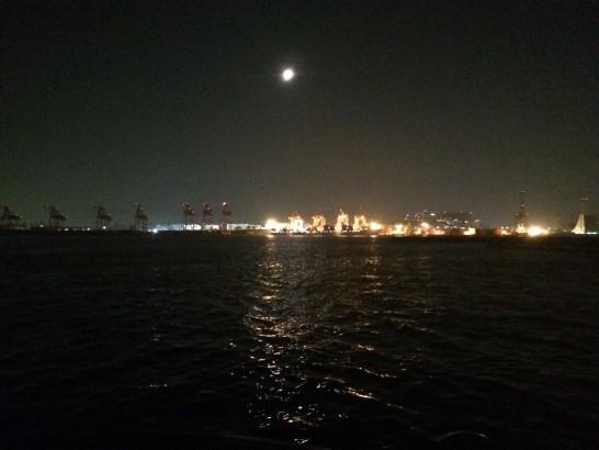 青海南ふ頭公園 釣り