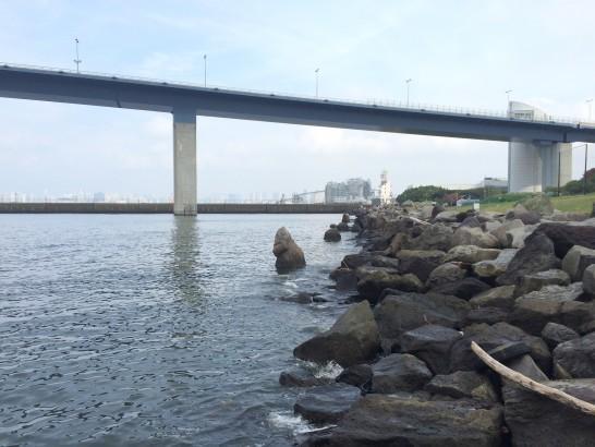 若洲海浜公園 人口磯