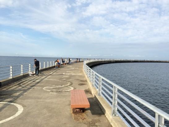 検見川浜突起 中央付近