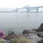 新ロッドに入魂できるのか?!若洲海浜公園へ朝釣りに行ってみました。