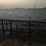 前打ち竿が弧を描く?!若洲海浜公園へ夜釣りに行ってみました。