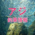 最終回に有終の美を飾れるのか?!東京湾陸っぱりアジ釣り釣果情報(集計期間:2015年10月29日~11月4日)