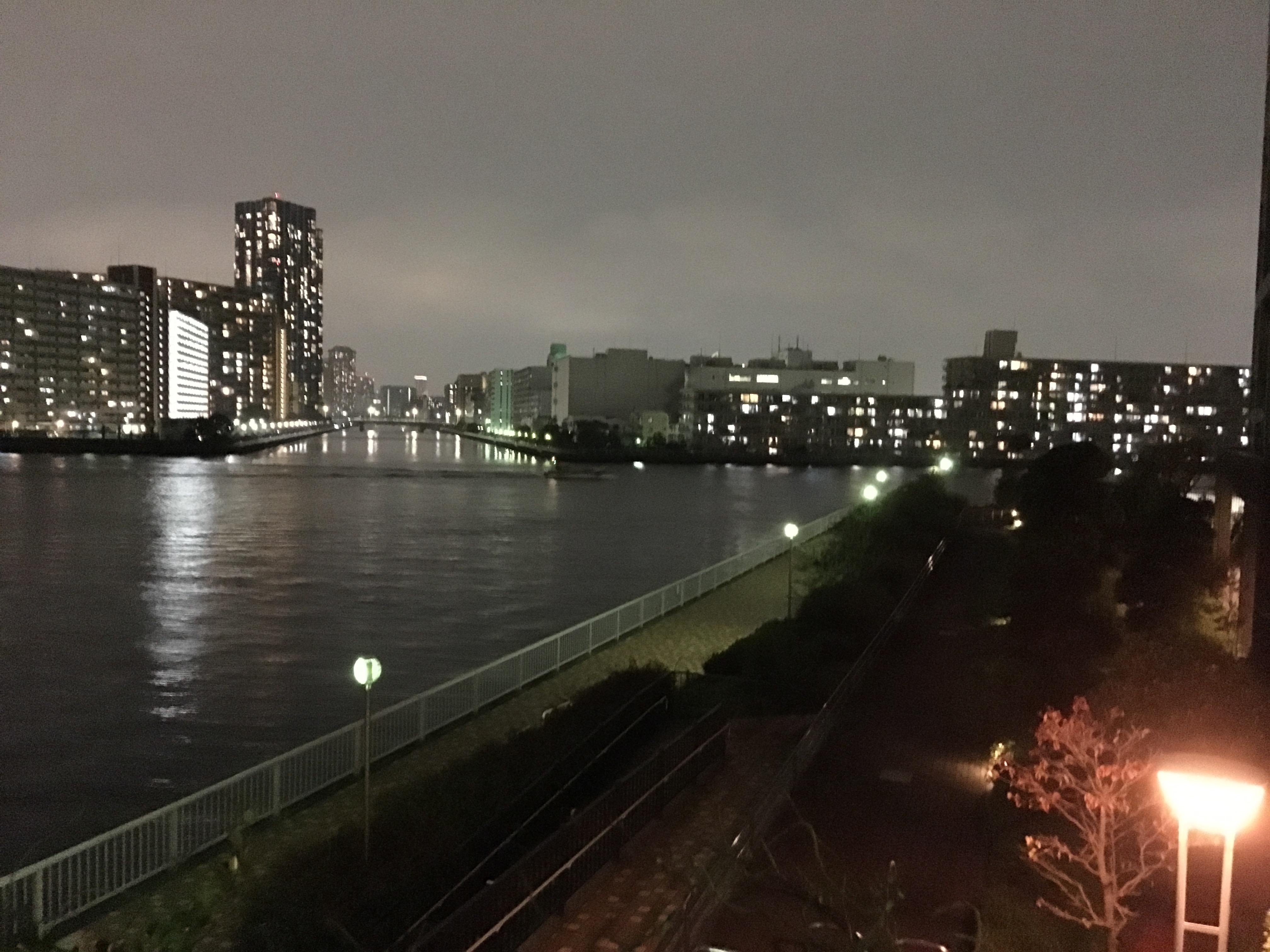 辰巳一丁目 散歩道
