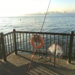 悪天候の後でも釣れるのか?!雨上がりの若洲海浜公園へ夜釣りに行ってみました。