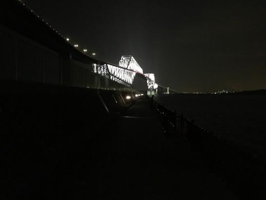 若洲海浜公園 夜釣り