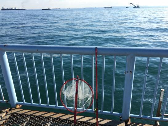 大黒海づり施設 前打ち釣り
