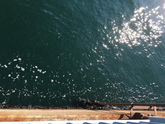 大黒海づり施設 釣り施設