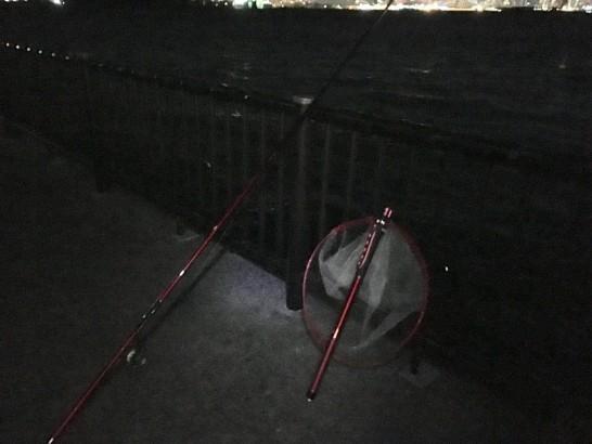 若洲海浜公園 釣り場