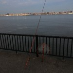 暁ふ頭公園を偵察?!若洲海浜公園へ朝釣りに行ってみました。