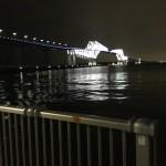今年の初フッコに出会った?!極寒の若洲海浜公園へ夜釣りに行ってみました。