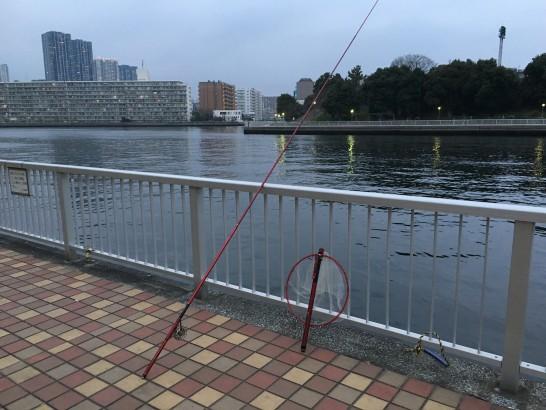 辰巳 釣り場