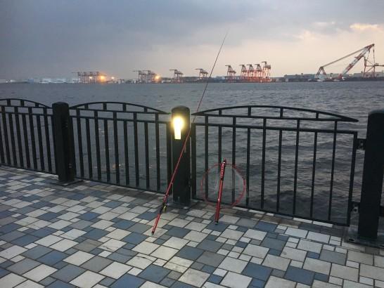 青海南ふ頭公園 釣り場