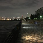 まだまだ渋い?!3連休の中日に青海南ふ頭公園へ夜釣りに行ってみました。