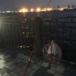 湾奥にも春告魚がやってきた?!春直前の青海南ふ頭公園へ夜釣りに行ってみました。