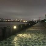 ようやく春到来か?!桜が咲く青海南ふ頭公園へ夜釣りに行ってみました。