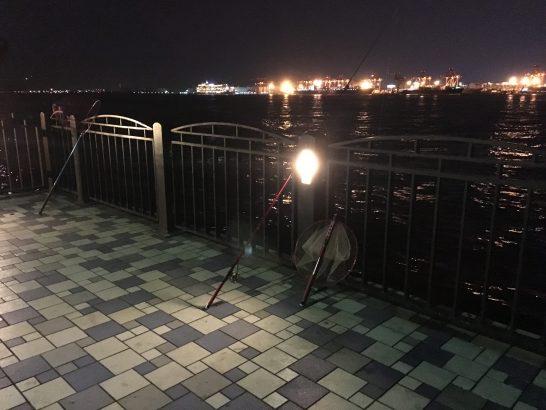 青海南ふ頭公園 ワンド付近