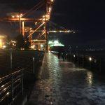 突然の通り雨に遭遇?!5月後半の青海南ふ頭公園へ夜釣りに行ってみました。