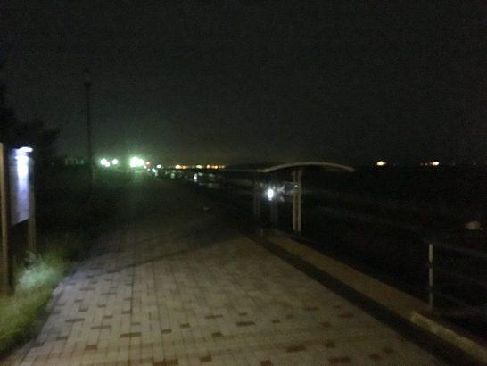 東扇島西公園 夜釣り